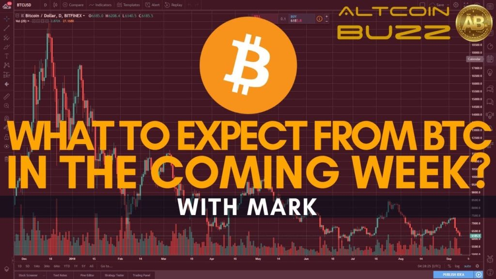 What to Expect from BITCOIN in the Coming Week? BTC Technical Analysis