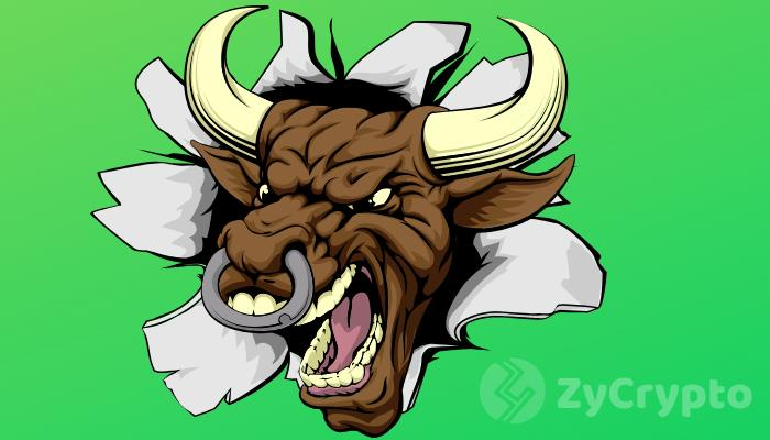 Is it that Time of the Year? Crypto Market Showing Signs Of A Bullish Breakout