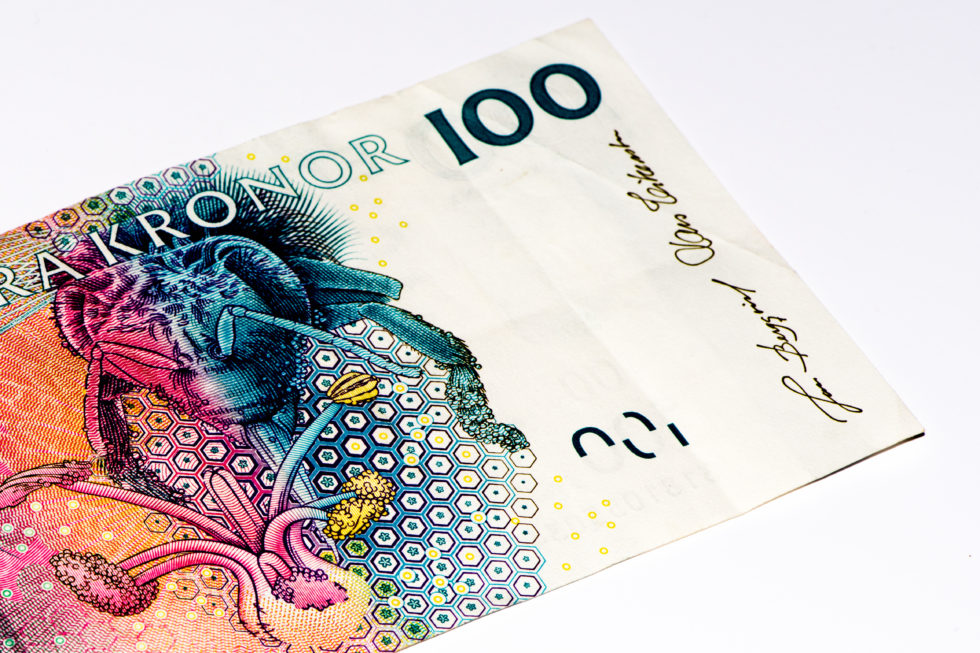 Without a Digital Currency, Sweden Faces the Privatization of Money