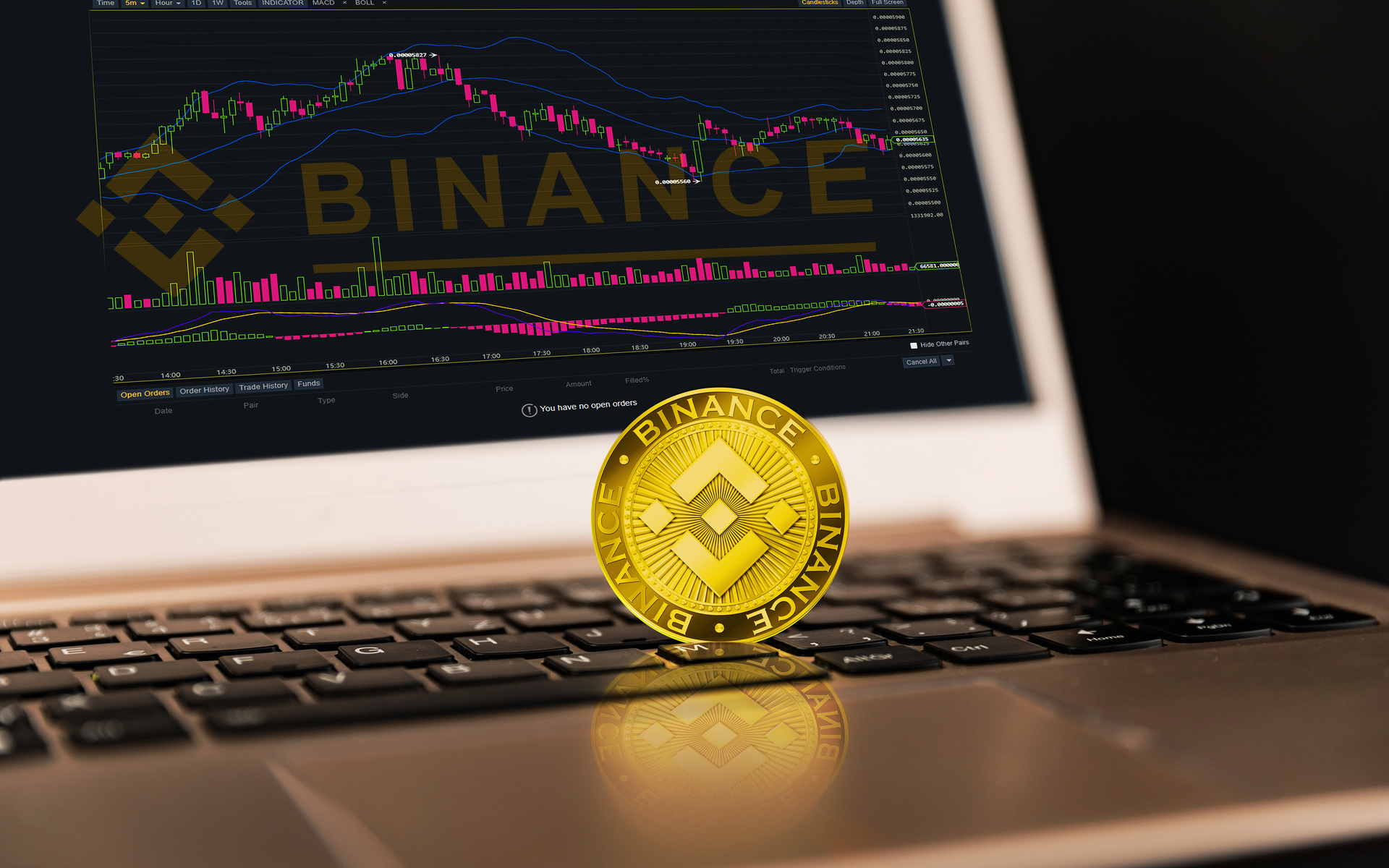 In-Depth Analysis Of Binance Coin (BNB) 'Almost Scary,' Says Binance CEO